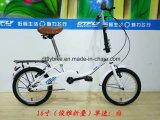 16inch 접히는 자전거, 강철 프레임, 단 하나 속도
