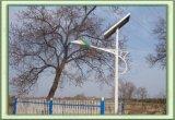 Lumières 6m solaires esthétiques exemptes d'entretien de route avec 42W LED (KY-SR07)