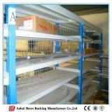 ISO9001証明書の鋼鉄は使い捨て可能な管ラック工場ラックを悩ます
