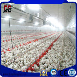 Q345b材料が付いている軽いタイプ養鶏場の鉄骨構造