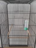 Gaiola de gaiola de gaiola de gaiola de gaiola de gaiola de grande porte