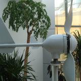 Generador de Energía Eólica 600W 24V con Controlador de Carga