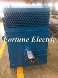 Rendement de 2 Pôles S1 prix électrique de moteur à courant alternatif de 3 phases