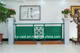 Barandilla de acero galvanizada decorativa de alta calidad 3 del balcón de la aleación de aluminio