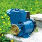 Pompe à eau périphérique électrique à gaz en cuivre avec pompe à laiton