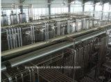 Riga di chiave in mano di produzione di latte di progetto