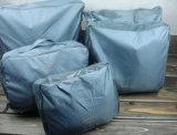 Le sac multifonctionnel imperméable à l'eau de sac de soutien-gorge de sous-vêtements de sac de finissage de sac chausse le sac cinq parties