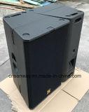T24n verdoppeln 12 '' Bi-AMPERE/passiver Schalter-Berufszeile Reihen-Lautsprecher mit ausgezeichneter Rede, Vollaudiolautsprecher