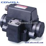 Servo válvula de latão de água / óleo elétrica
