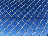Treillis métallique électrique d'usine de la Chine de frontière de sécurité de maillon de chaîne de PVC Coated&