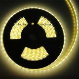 Flexibler LED Streifen Gleichstrom-12V 24V SMD5050 RGBW