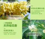 perfumes dourados da mulher da qualidade da parte alta do perfume 50ml