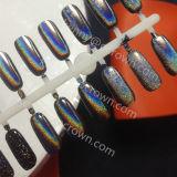 Голографический яркий блеск переноса цвета, порошок пигмента цвета Hologram Spetraflair для ногтей