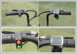 bicyclette 350W électrique avec la batterie au lithium 48V/10ah