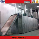 Dwc Multi Belt Dryer for Vegetable and Fruit