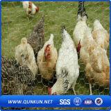 engranzamento de fio sextavado da galinha do tamanho de engranzamento de 45mmx45mm com preço de fábrica