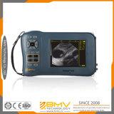 Porc tenu dans la main de machine d'ultrason de mode de la bonne qualité B de Farmscan M50, mouton, scanner d'ultrason de chèvre