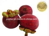 Het hete Verkopende Uittreksel van de Mangostan van alpha--Mangostin 10%-90%