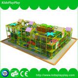 De BinnenSpeelplaats van het Winkelcomplex van Commerical van kinderen