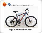 Une bonne conception des vitesses de vélo de montagne Hot-Sell 30