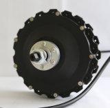 Bici del motor eléctrico de la rueda del motor tres del eje de rueda