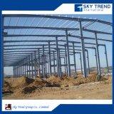 Projeto de oficina pré-fabricada da construção de aço para a venda
