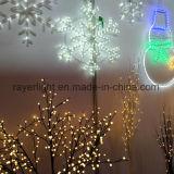 Éclairage LED de RVB, décoration professionnelle d'éclairage pour la décoration de Noël