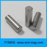 AlNiCo van uitstekende kwaliteit Magneti AlNiCo per de Magneten van Bestelwagens Chitarra