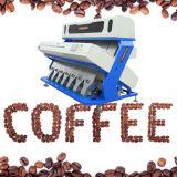 베트남 커피 콩 5000pixel 색깔 분류하는 사람