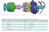 Reparación o Remanufacturing para la placa de la válvula del bloque de cilindro de los recambios de la bomba de petróleo hidráulico de Rexroth A11vlo190