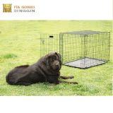 Gabbia saldata piegatura esterna del cane di animale domestico