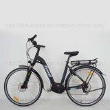 """bici eléctrica de 28 """" Wemen centrales del motor (TDB16Z)"""