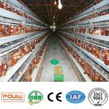 Gabbia di strato del pollo della batteria dell'azienda agricola di pollo su Saling