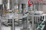 De automatische Machine van de Productie van de Verpakking van het Sap