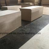 Vidoeiro Madeira contraplacada CP/Cp Grau de mobiliário