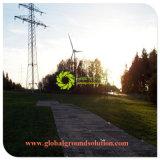 HDPEの芝生を保護するプラスチック地上の保護道のマット