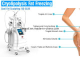 De vette het Bevriezen Machine van het Vermageringsdieet van het Lichaam van Cryotherapy Cryolipolysis van de Fabrikanten van de Machine Koele Beeldhouwende