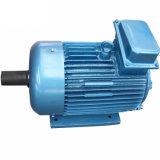 Alta eficiencia Y2 de las normas IEC la carcasa de aluminio del motor eléctrico asíncrono trifásico