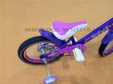 Dernière vente nouvelle fille Bike/fille bébé/vélo Vélo/Kids Bike