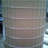 Kohlenstoffstahl galvanisierte geschweißten Maschendraht/galvanisiertes geschweißtes Ineinander greifen (XM-04)