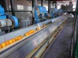 Linha de processamento alaranjada da planta Turnkey de Wholeo do projeto