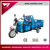 Carga elétrica Trike do carregamento 400kg de Autonomia 30 Kilometros