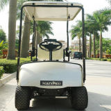 중국 공장 도매 단일 좌석 전기 지능적인 골프 차량 (DG-C1)