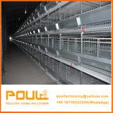 Подгонянная клетка цыпленка низкой цены с типом h оборудований цыплятины полного комплекта автоматическим