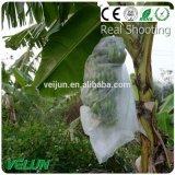 Biodegradierbares umweltfreundliches Vliesstoff-Gewebe Dongguan-Veijun