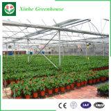 El policarbonato Greenhouseeasily montado completar los gases de efecto invernadero, Agrícola Jardín