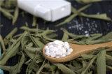 초본 자연적인 설탕 Rebaudioside 98% 스테비아