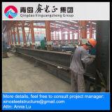 Magazzino della struttura d'acciaio del fornitore della Cina (SSW-14021)