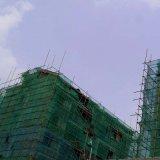 수출을%s 녹색 건축 비계 그물을 건설하는 비계