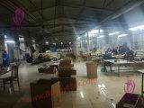 360 VoorSluiting 100% van het kant de Maagdelijke Menselijke Groothandelsprijs van de Kwaliteit van het Haar Remy Beste